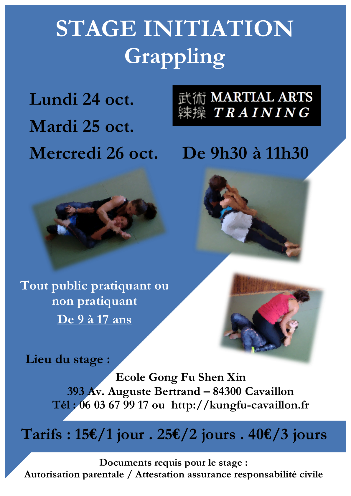 AFFICHE grappling